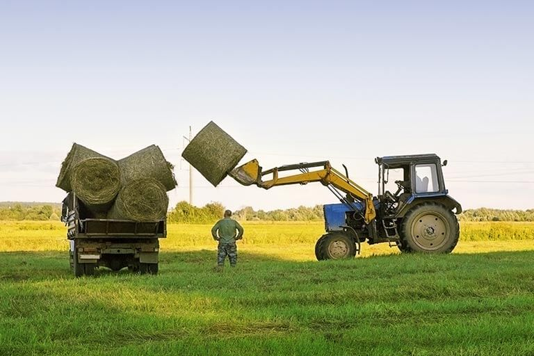 tractor loading dry grass bales onto trailer