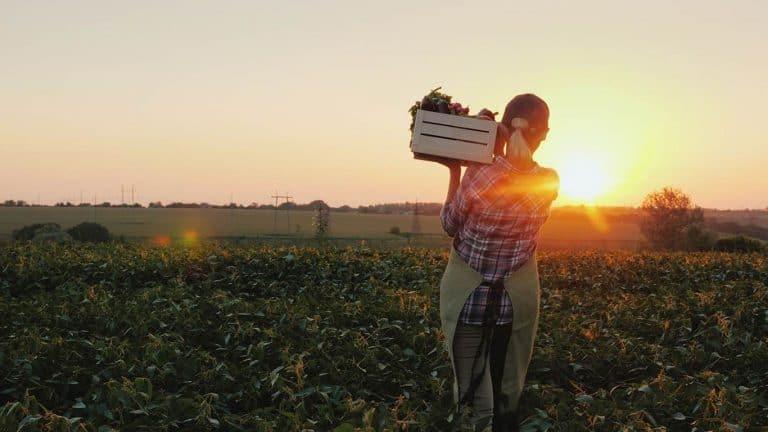 Crosby Insurance - Farmers Insurance